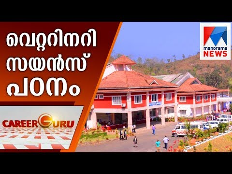 Career Guru: College of Veterinary Science and Animal Husbandry | Manorama News
