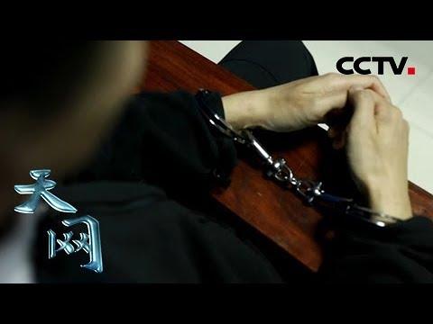 """《天网》小""""虾""""钓大""""鱼"""":运输船丢失贵重货物却为何无人报警?  CCTV社会与法"""