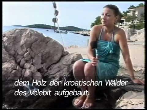SUB-ART-2004, Croatian television, sound, 5:55 min., Razanj/Croatia