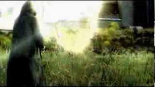 S.T.A.L.K.E.R. песня про чистое небо клип.(, 2013-10-30T13:20:24.000Z)