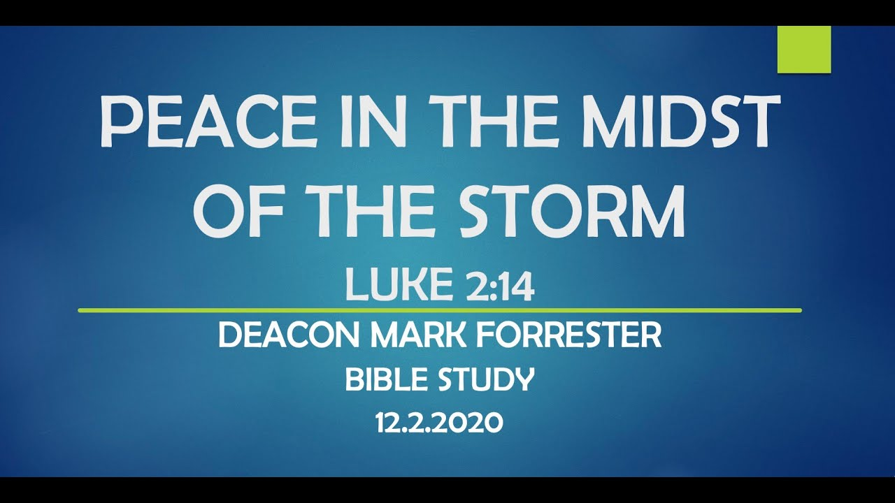 PEACE IN THE MIDST OF THE STORM - LUKE 2:14