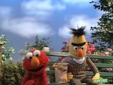 Sesame Street  Elmo Scares Berts Pigeons Away  YouTube