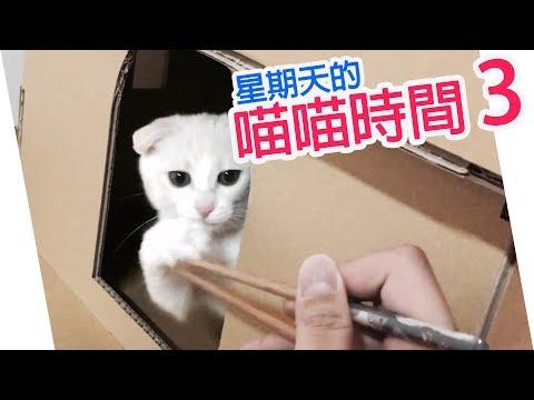 【配音】星期天的喵喵時間(3)-YUI的筷子逗貓秀!
