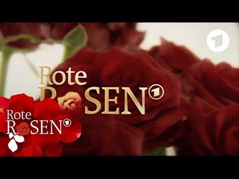 Alle Vorspänne in einem Clip | Rote Rosen