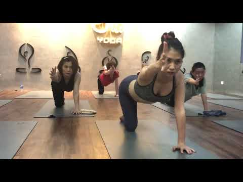 20 minutes yoga workout for beginner with Master Ajay verma in Jao yoga