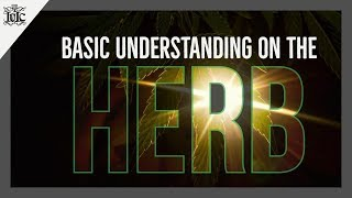 Download Video The Israelites: The Basic Understanding On The Herb. MP3 3GP MP4