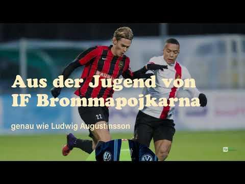 Die Werder-Zugänge: Felix Beijmo