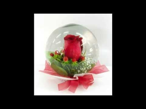 Rosely flores encapsuladas youtube - Contenedor de agua ...