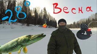 (-28) Рыбалка, Жерлицы, Очея!