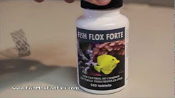 Fish Flox Forte Ciprofloxacin 500 mg Fish Antibiotic