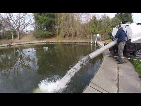 Howe Park Trout Fishing