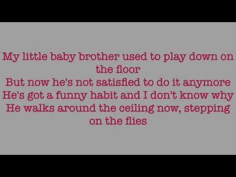 Baby Brother - The White Stripes (lyrics)
