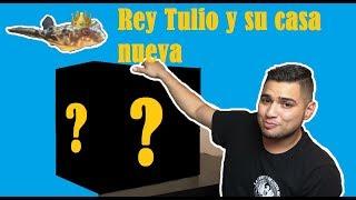 Pecera Nueva para Tulio y las Gambas. Blog #2