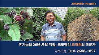 유기농업 26년차의 위엄, 포도명인 도덕현의 복분자 0…