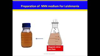 NNN medium for Leishmania Culture