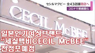 """[일본뉴스]일본인기여성브랜드""""세실맥비CECIL…"""