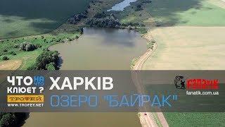 #Рыбалка в Харькове | Что на Что Клюет? c Владимиром Журавлевым