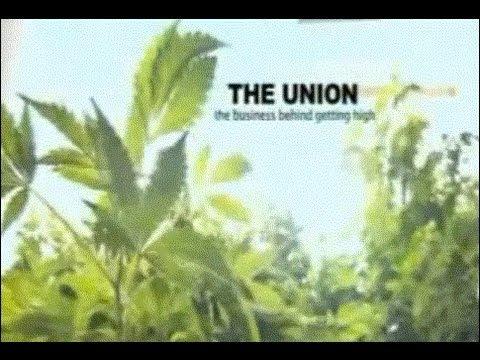 Видео Prohibition research paper