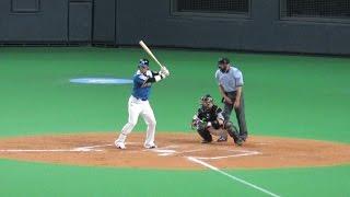 2014/7/12 北海道日本ハムファイターズvsソフトバンクホークス 左膝手...