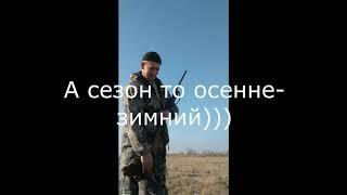 Закрытие охоты на фазана 2019 в Ростовской области