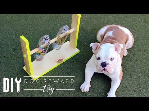DIY Dog Reward Toy