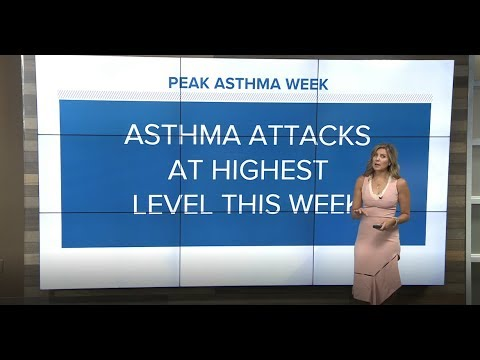 Allergic Asthma Peak Week: How To Protect Yourself
