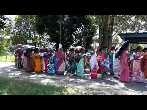 rangapara ( Women Rally ) Swachhata Hi Sewa March (Assam Sonitpur)