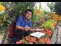 【寶島有意思】放下相機,速寫家鄉 - 蕭漢元