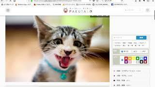フリー写真素材サイト「ぱくたそ」の利用方法 thumbnail