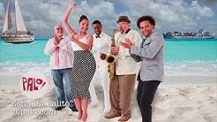 "PALO! ""Echa Un Palito"" • Musica Cubana, Cuban Music, Merengue"