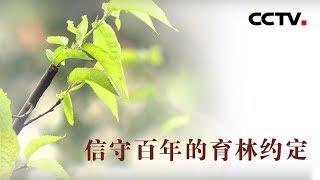 [中华优秀传统文化]信守百年的约定| CCTV中文国际