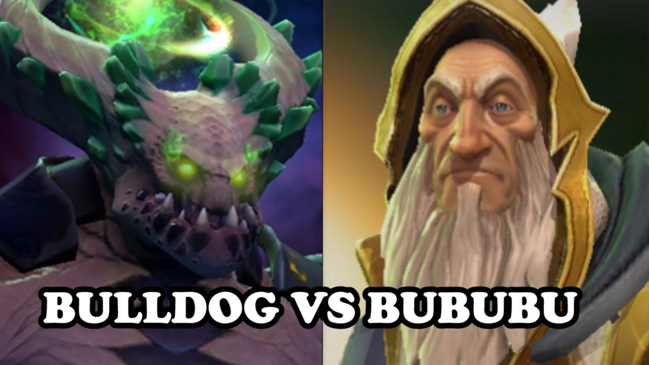 Bulldogge und Bububu Dating