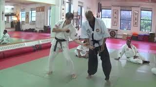 Hansu Hapkido Lessons on IL