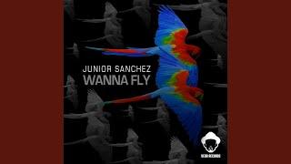 Wanna Fly (V5 - No Bull Horn)