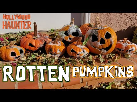 DIY Halloween Decoration Idea | Rotten Pumpkin Props | Creative Jack-o'-lantern Idea | Dollar Tree