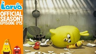 official chick 1 - larva season 1 episode 75