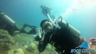 Indi Dive Truk Lagoon
