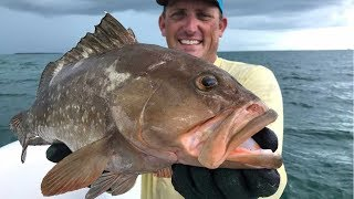 No Hook, No Line!!! Bare Handed Grouper Catch Clean Cook! Tasty Tuesday!