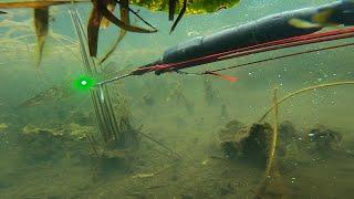 Подводная рыбалка Вихрь 20 смог вытянуть меня на водных лыжах не напрягаясь