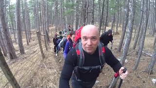 Discovery Крым. Прогулка в волшебный лес