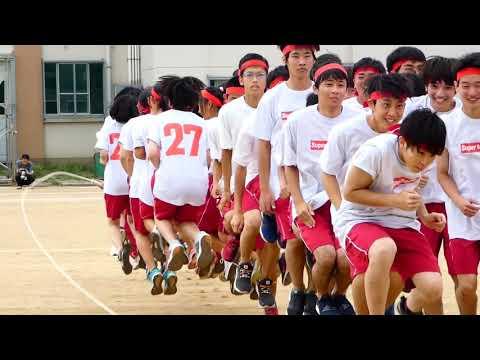 Japanese high school sports festival! 体育祭! | EXCHANGE YEAR JAPAN