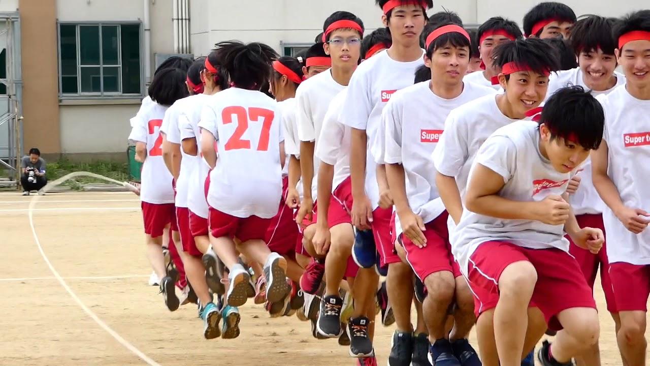 japanese sports japan festival 体育祭 exchange