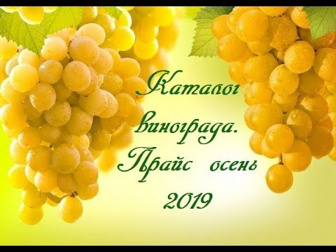 Каталог винограда. Прайс осень 2019