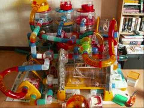Crazy hamster cages part 2 youtube - La plus grande cage a hamster du monde ...