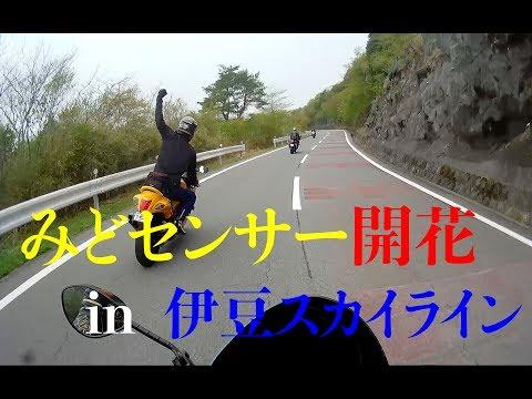 #81 メガスポツーリング in 伊豆スカイライン GSX1300R 隼 Ninja ZX-14R