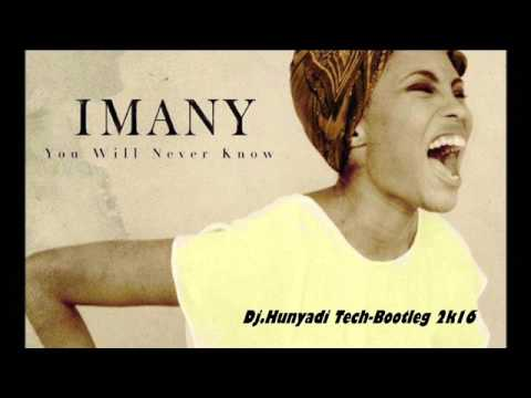 imany you will never know video download