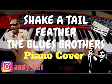The Blues Brothers Feat. Ray Charles - Shake A Tail Feather / Piano Cover