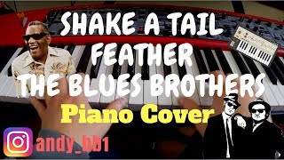 Shake A Tail Feather The Blues Brothers Feat. Ray Charles Cover
