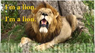 Children's song - I'm a lion - English lesson