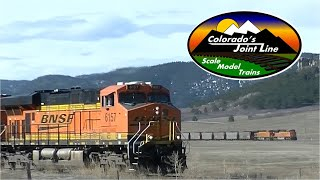 Union Pacific & BNSF Trains on Colorado's Front Range